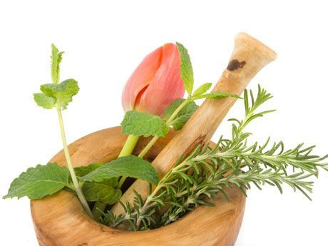 Planta Diabetes